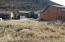 TBD Beaver Court, Glenwood Springs, CO 81601