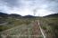 TBD Wulfsohn, Glenwood Springs, CO 81601