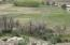 upper hay/pasture field before irrigation season