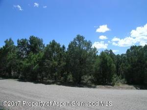 420 Pinon Point, Glenwood Springs, CO 81601