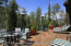 81 N Willow Court, Aspen, CO 81611