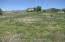 Hay/pasture fields