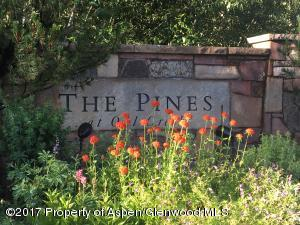 Pines Entrance C