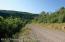 Lot 3 Beaver Creek Rd/Cr 317, Rifle, CO 81650
