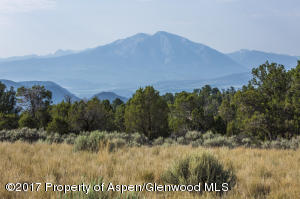 TBD Elk Springs Drive, Flg. 8 Lot 14, Glenwood Springs, CO 81601