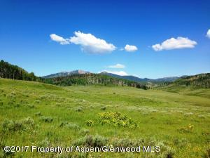 59255 Button Willow Drive, Clark, CO 80428