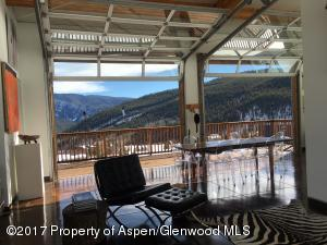 175 Hawk Lane, Basalt, CO 81621