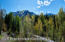 71 Pitkin Way, Aspen, CO 81611
