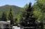 1020 E Cooper Avenue, Aspen, CO 81611