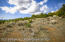 TBD Mesa Drive, Rifle, CO 81650