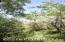 290 Timberlane Loop Road, Lots 314-315, Craig, CO 81625