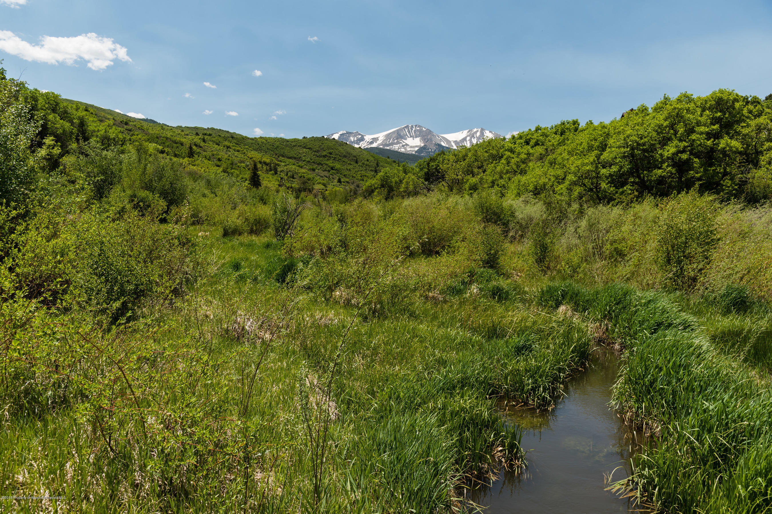 ... 2555 W Sopris Creek Road, Basalt, CO 81621