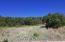 597 Old Midland Spur, Glenwood Springs, CO 81601
