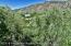 2602 Woodberry Drive, Glenwood Springs, CO 81601