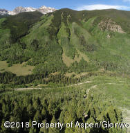 TBD Castle Creek Road, Aspen, CO 81611