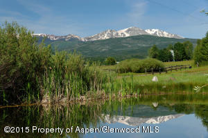 6890 East Sopris Creek Rd-large-024-6890