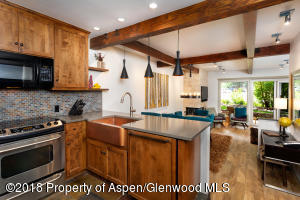 610 S West End Street, D-103, Aspen, CO 81611