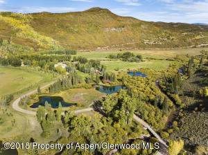 Old Snowmass Homes for Sale - Sally Shiekman