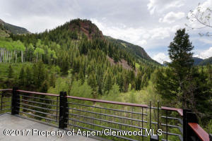 3224 Castle Creek Rd Aspen CO-small-005-