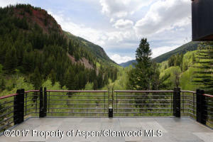 3224 Castle Creek Rd Aspen CO-small-006-