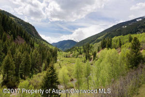 3224 Castle Creek Rd Aspen CO-small-008-