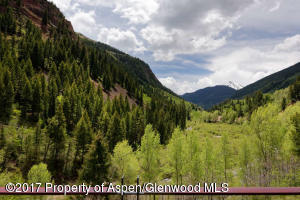 3224 Castle Creek Rd Aspen CO-small-012-