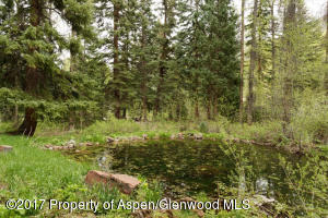 3224 Castle Creek Rd Aspen CO-small-014-