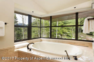 3224 Castle Creek Rd Aspen CO-small-054-