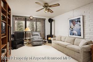 224 Vine Street, Aspen, CO 81611