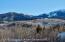 23 Meadow Lane, Snowmass Village, CO 81615