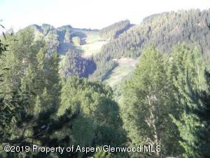 308 N 1st Street, Aspen, CO 81611