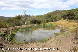 Spring Fed Pond 3