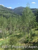 134 Bear Creek Lane, Redstone, CO 81623