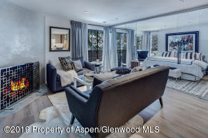935 E Hopkins Avenue, Unit 5, Aspen, CO 81611