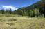 9888 Castle Creek Road, Aspen, CO 81611