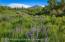 277 Danielson Drive, Aspen, CO 81611