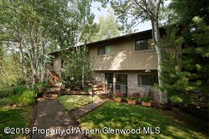116 W Lupine Drive, Aspen, CO 81611