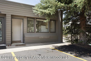 309 Pacific Avenue, Unit #1, Aspen, CO 81611