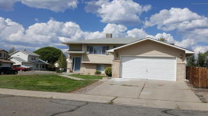 302 Meadow Court, Rifle, CO 81650