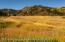 137 Primrose Path, Aspen, CO 81611
