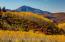 199 Eagle Park Drive, Aspen, CO 81611