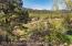 217 Longhorn Lane, Basalt, CO 81621