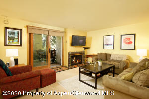 910 W Hallam Street Street, Aspen, CO 81611