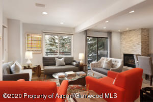 650 S Monarch Street, Unit 2, Aspen, CO 81611