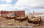 300 Spring Coulee Way, Craig, CO 81625