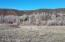 248 River Bank Lane, Glenwood Springs, CO 81601