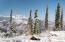 1020 Carroll Drive, 300, 310, 314, Aspen, CO 81611