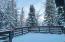 99 Forest Lane, Snowmass Village, CO 81615