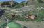 511 & TBD Lazy Chair Ranch Road, Aspen, CO 81611