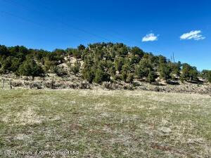769 Perry Ridge, Carbondale, CO 81623